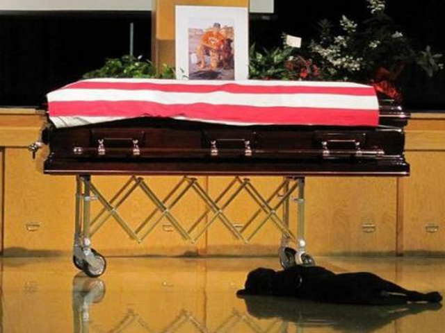 Did This Grieving Dog Photo Bring up a Memory For You?